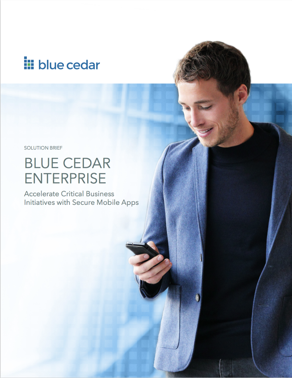 Blue Cedar Enterprise Solution Brief