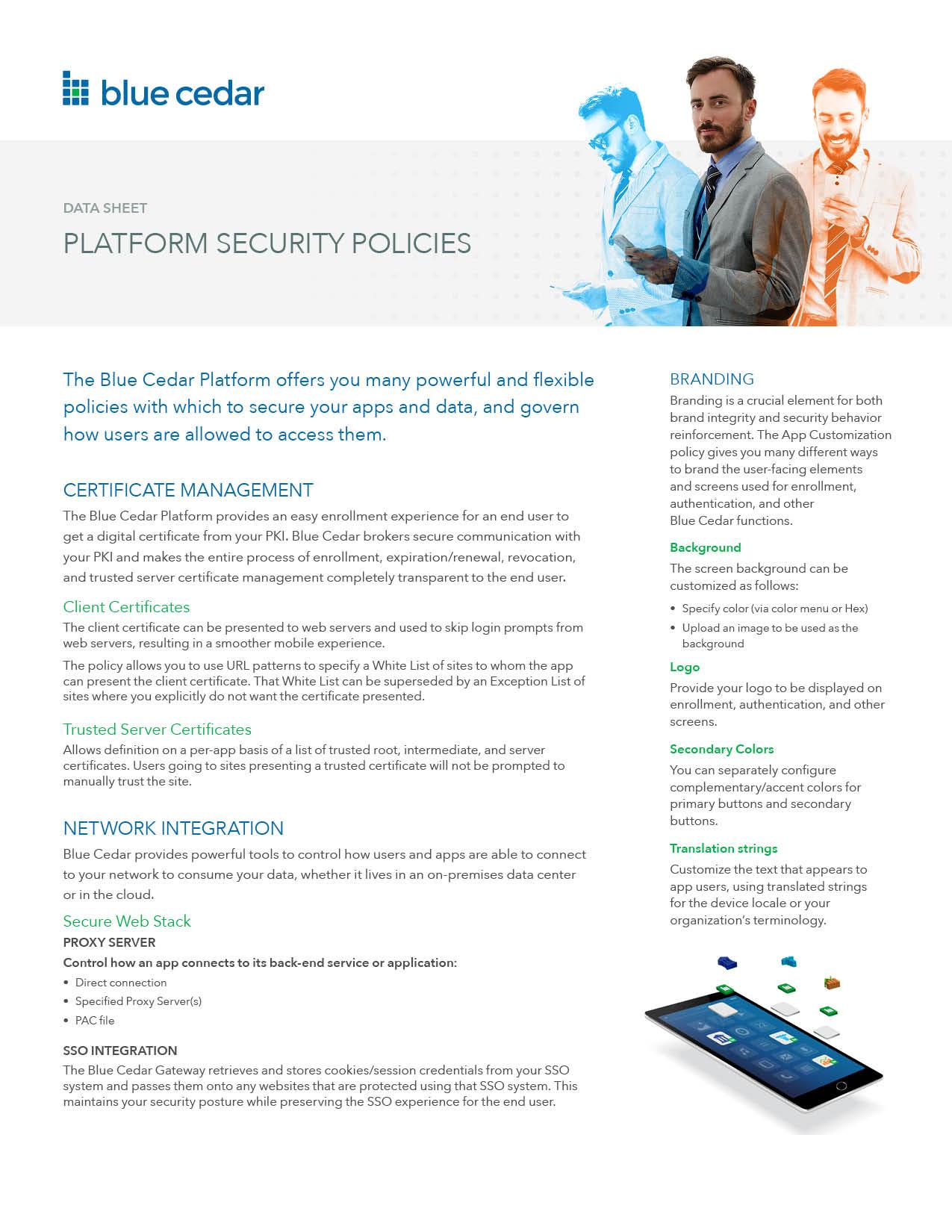 Blue Cedar Security Policies